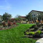 Private Residence At Southern Highlands Yard And Landscaping